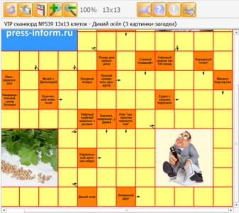 Сканворд №539 13х13 клеток - Дикий осёл (3 картинки-загадки)